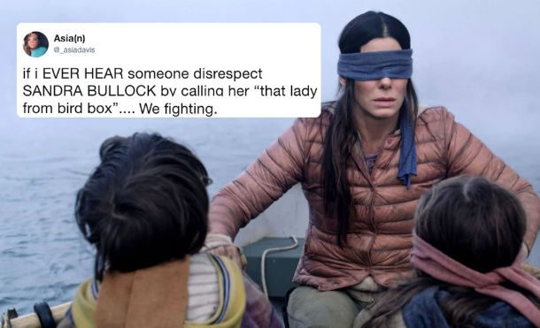 Bird Box Netflix Meme
